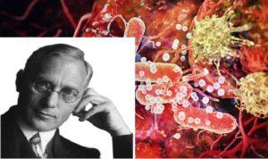 antynowotworowa terapia max gersona