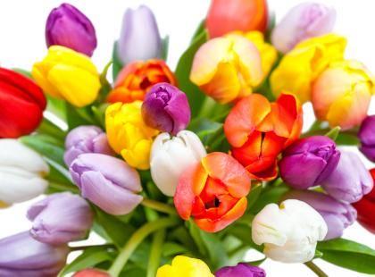 wspaniały bukiet kwiatów