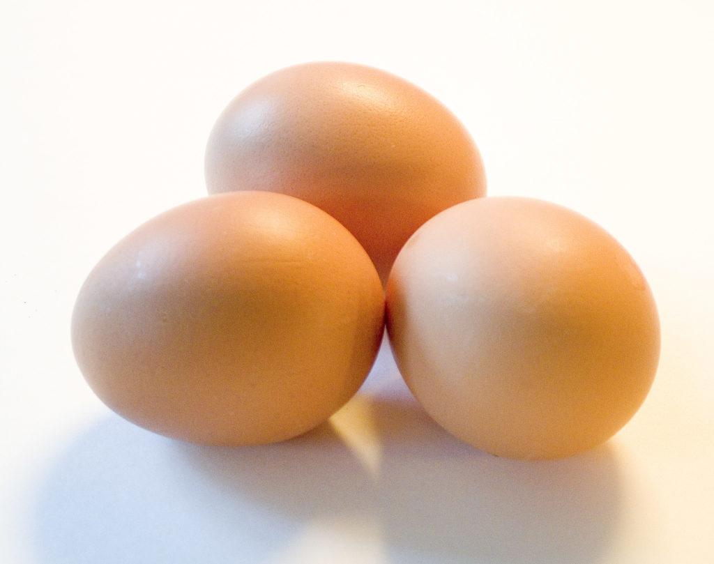 odżywcze jajka