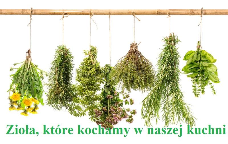 zioła, które kochamy w naszej kuchni